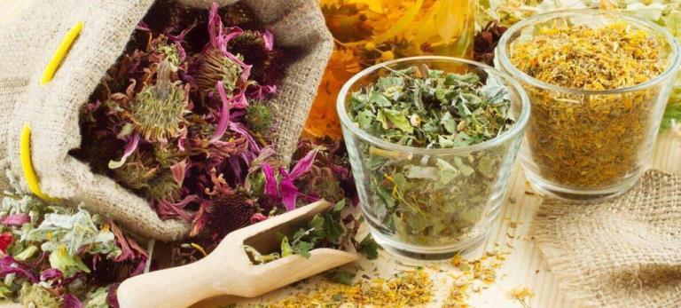 Как хранить целебные травы